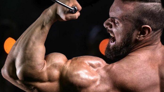 Testosterona aprende como mejorarla y como incrementarla
