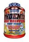Post-entrenamiento PHOENIX Big 1,1 kg
