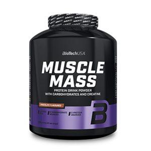 muscle mass MUSCLE MASS 3