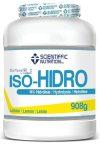 PROTEINA HIDROLIZADA ISO-HIDRO 90 (980gr)