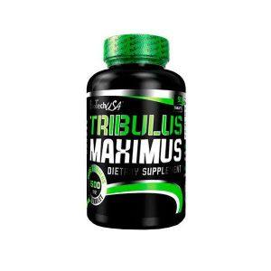 tribulus maximus 1 1