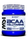 Bcaa + Glutamina Scientiffic Nutrition 500 gr.