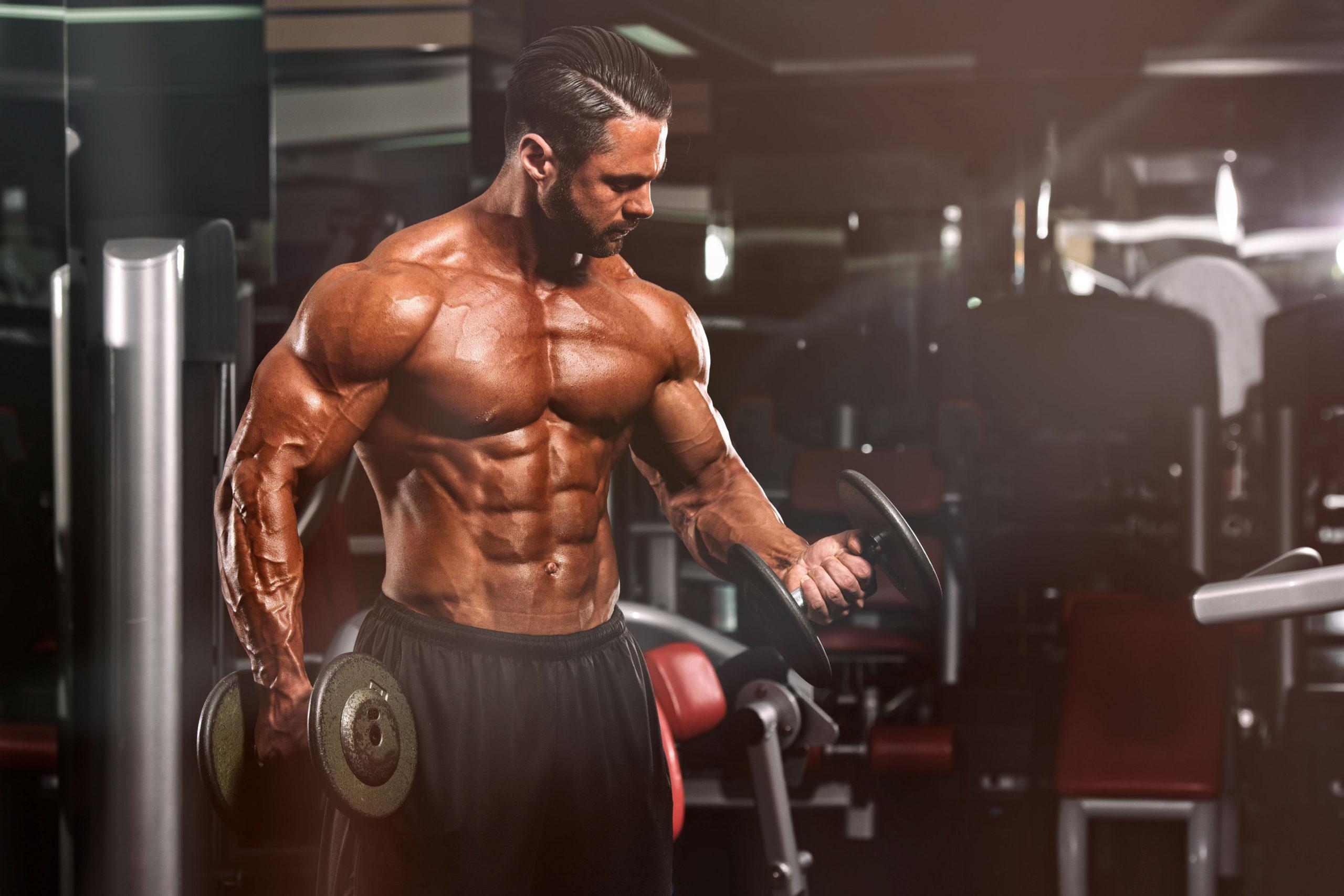El entrenamiento muscular y el orden de los ejercicios