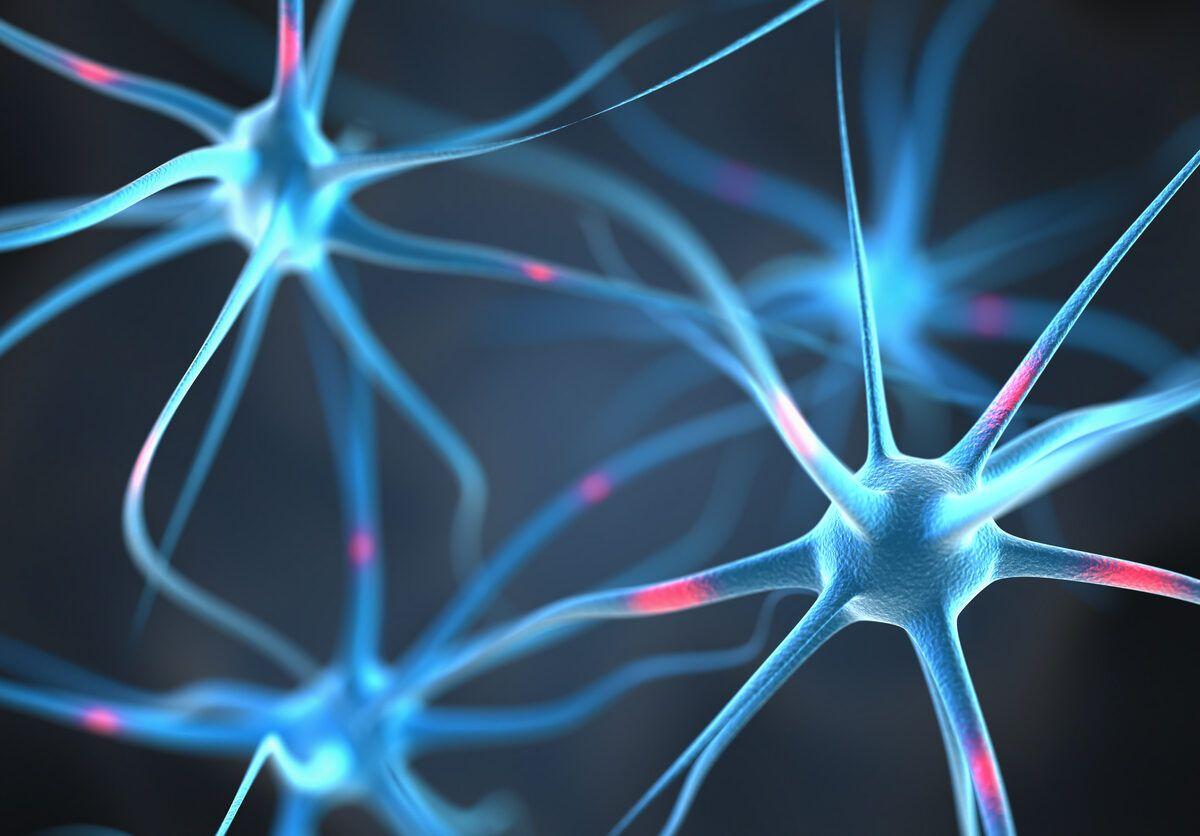 Acido ursolico el tratamiento de la esclerosis multiple