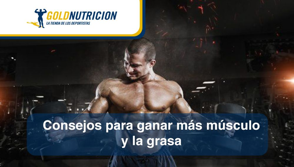 Consejos para ganar más músculo y hablar de la grasa