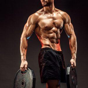 ganar más músculo