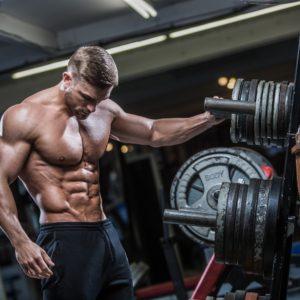 La fisiología muscular 2.0